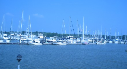 Maryland Major Tax Appeal Marina